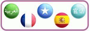 Dual languages