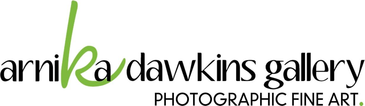 Arnika Dawkins Gallery company logo
