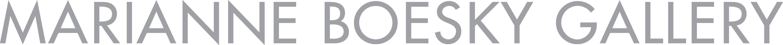 Marianne Boesky Gallery company logo