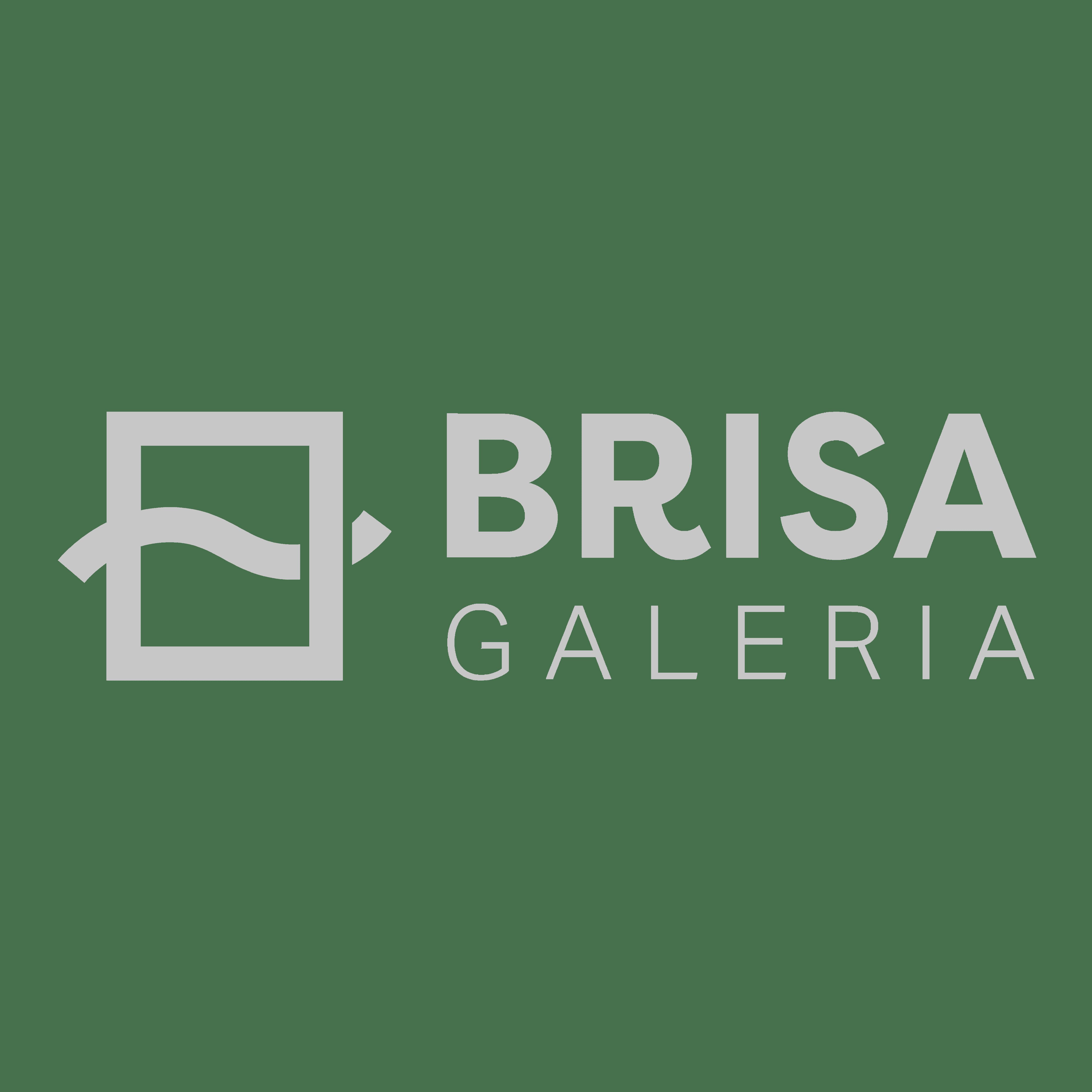 Brisa Galeria company logo