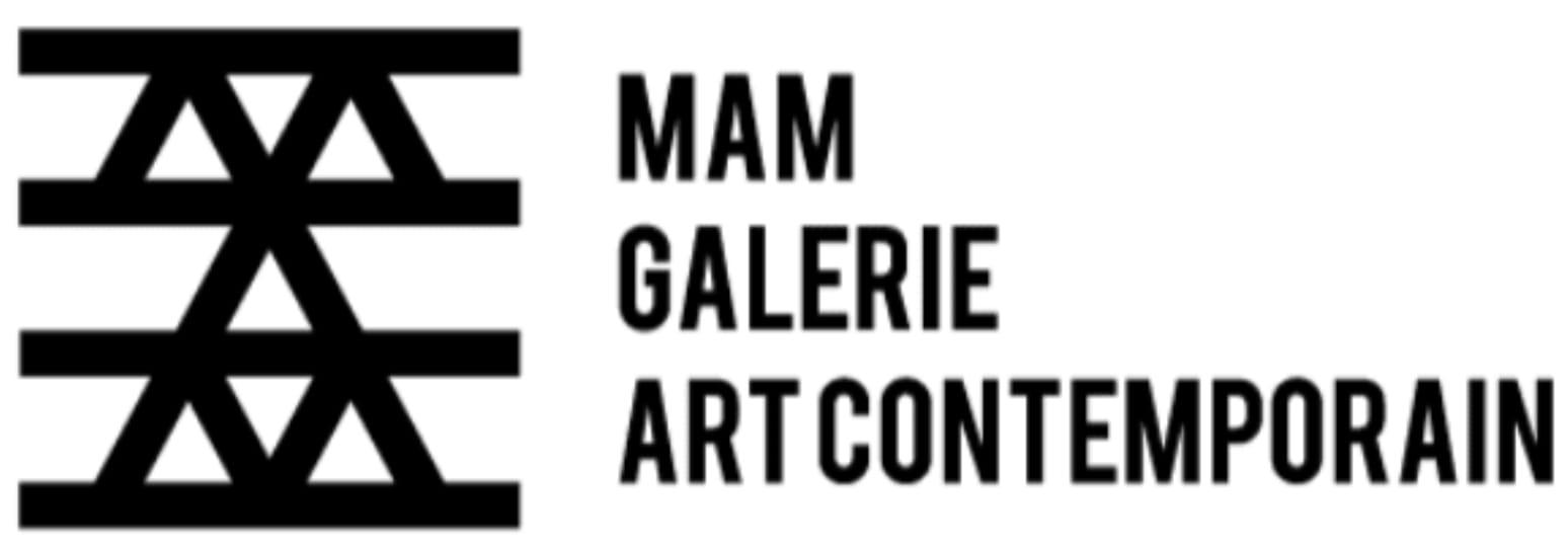 Galerie MAM company logo