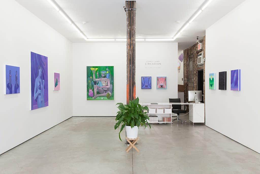 Installation image of Corey Lamb's