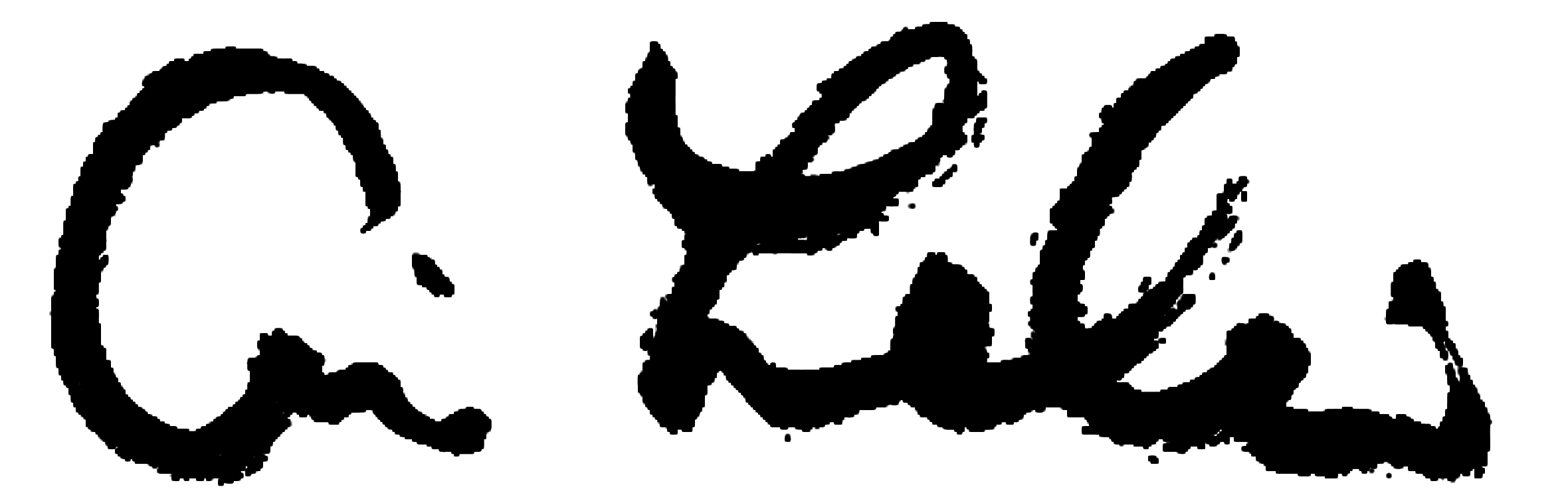 Ari Lankin company logo