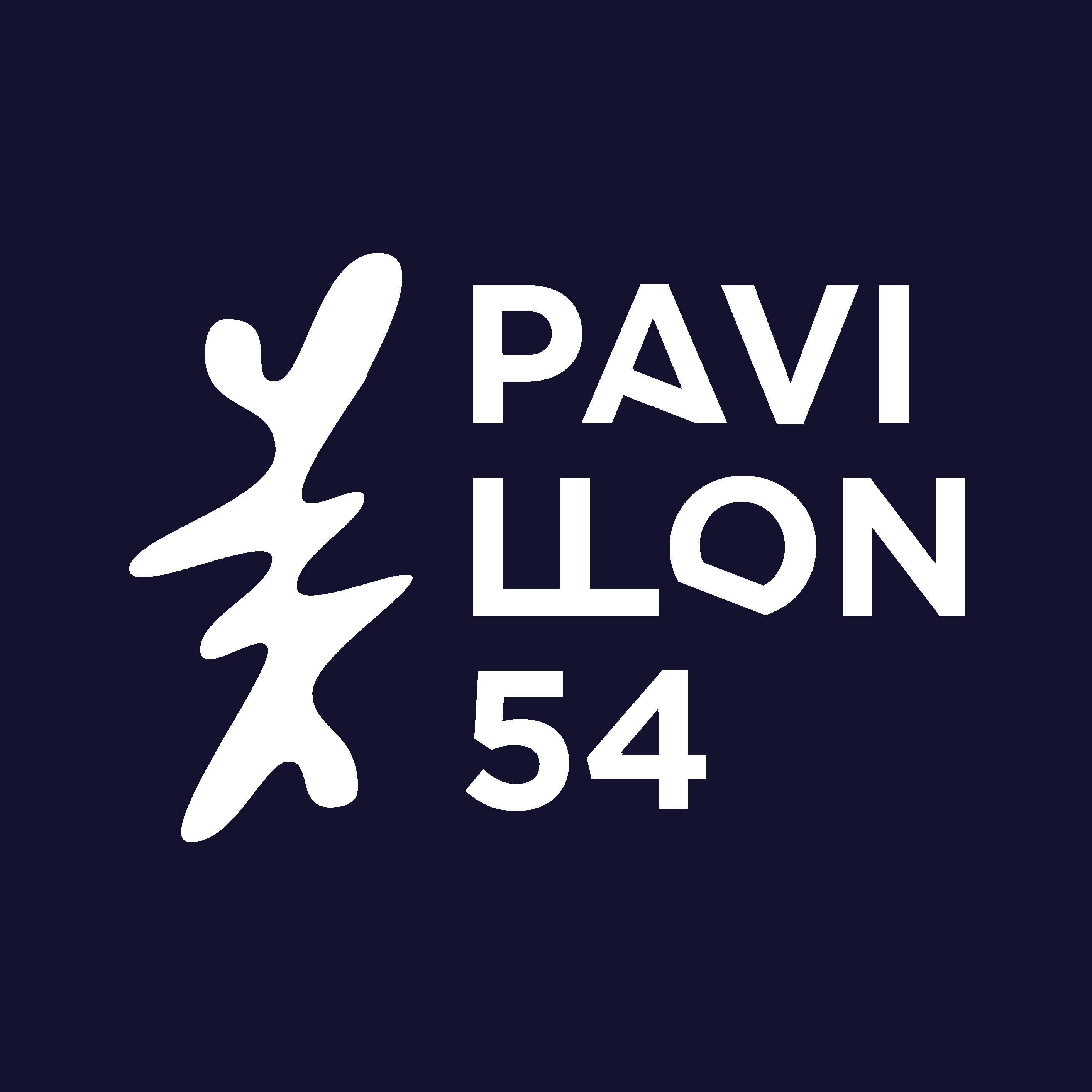 Pavillon 54 Limited company logo