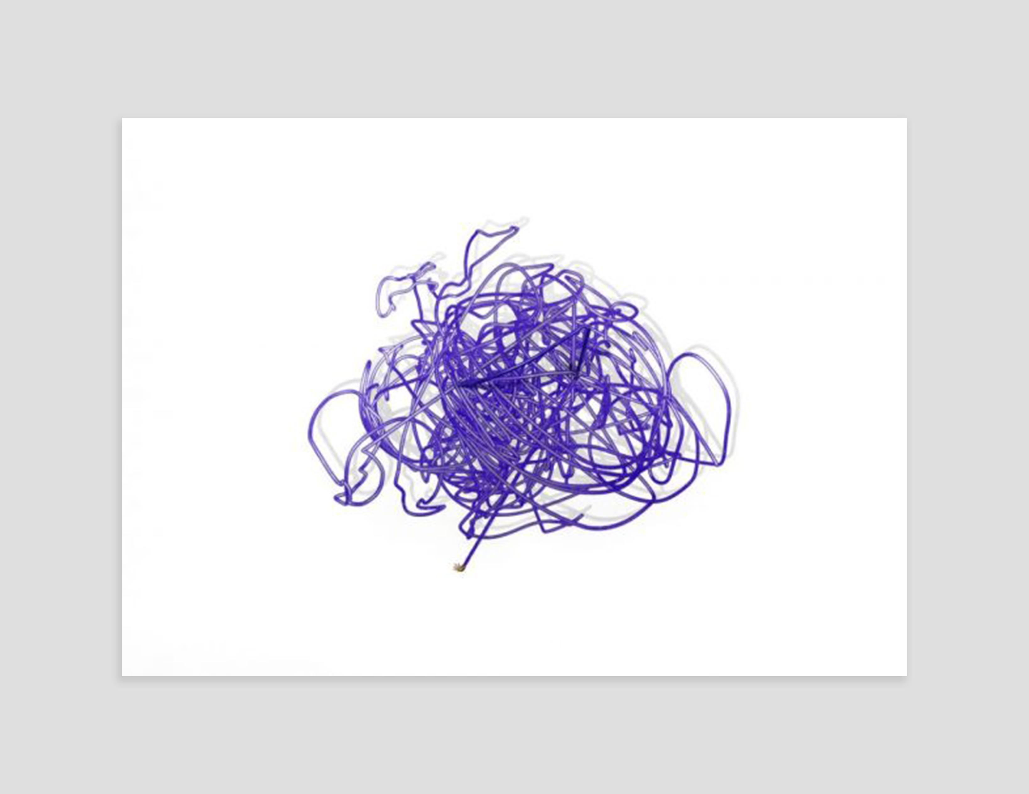 Fine Art Print by Rashaad Newsome at Zane Bennett Contemporary Art