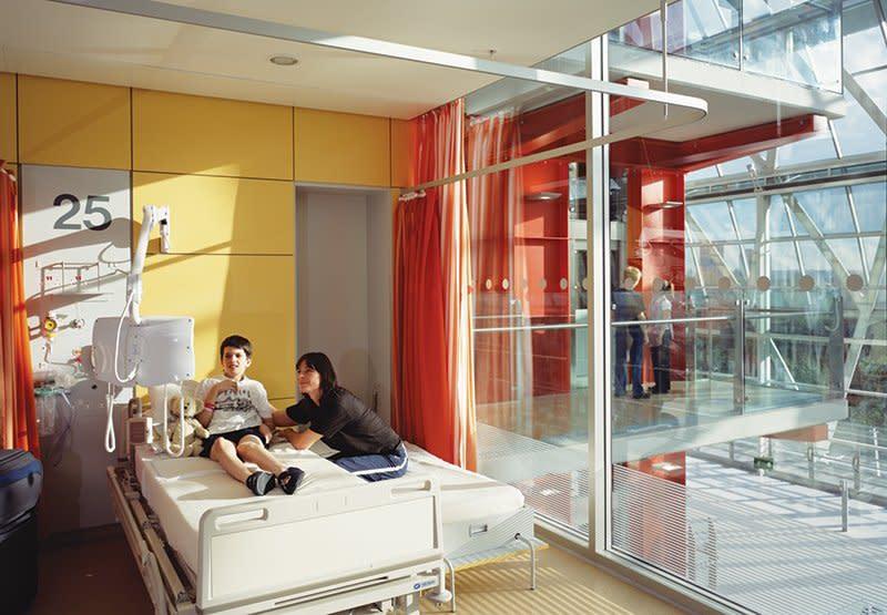 Evelina London Children S Hospital Hopkins Architects
