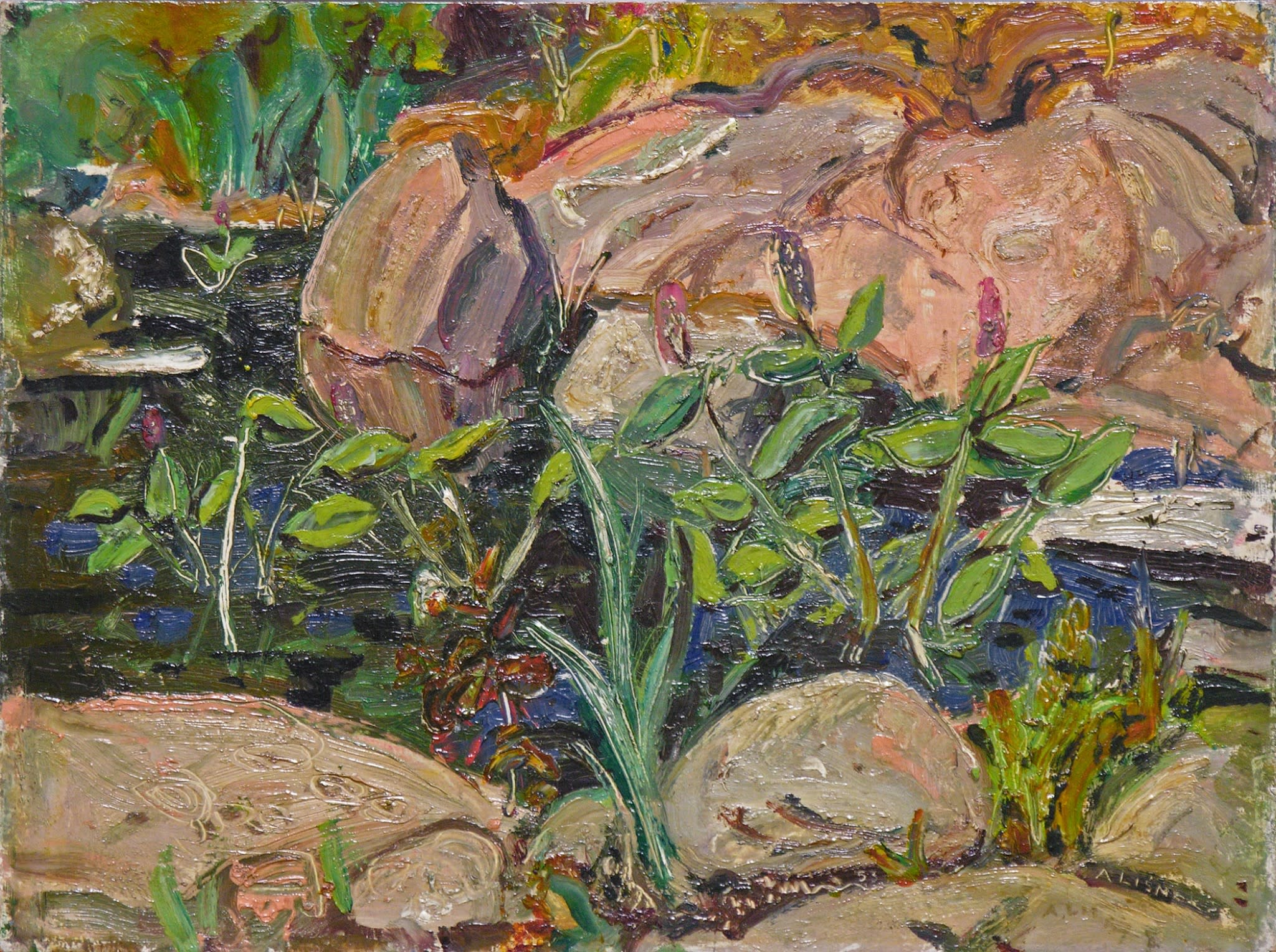 Arthur Lismer, Rocks and Pool, Georgian Bay, 1953