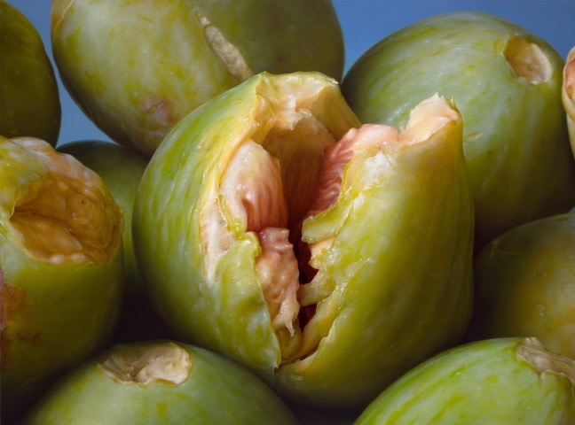 Figs - Antonio Castello