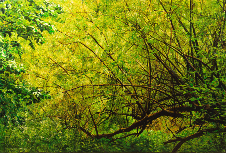 Fred Schley Hampstead Heath bushes Oil on canvas, 90 x 130 cm