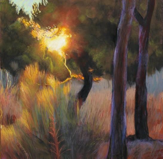 Penelope Fulljames Sunset in the Pines Pastel, 39 x 39 cm