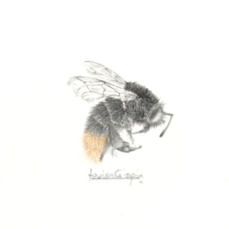 Louisa Crispin Flame Bee