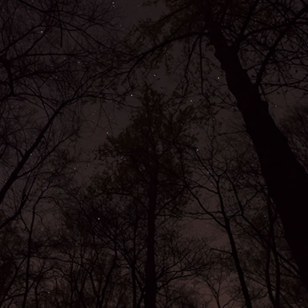 Jeanine Michna-Bales, A Lesson in Astronomy, Southern Kentucky, 2014