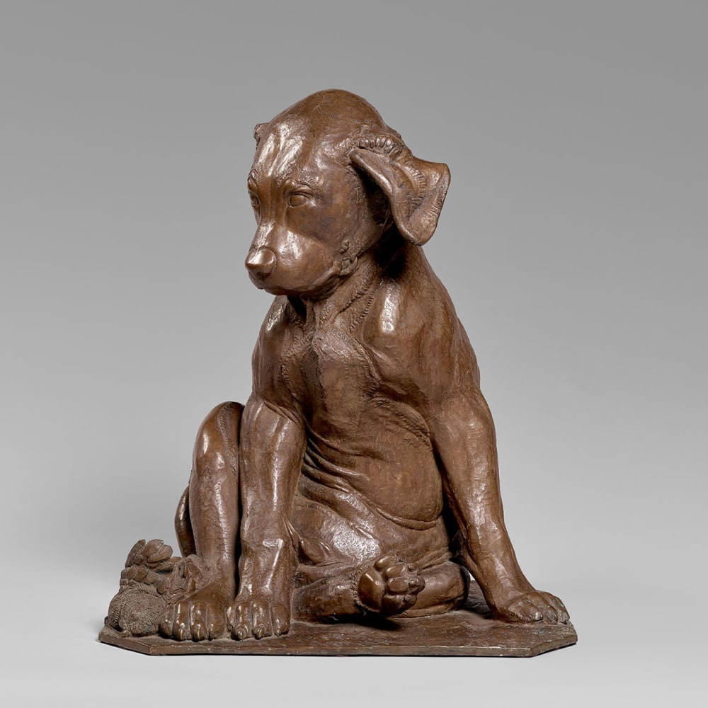 Sirio Tofanari, Bronze Sculpture of a Dog