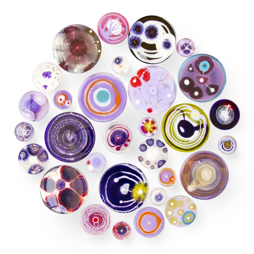 Klari Reis  Hypochondria, 30 (Purple), 2016  Mixed Media, Petri Dishes, Tee Nuts and Steel Rods  Diameter: 71.1 cm  Diameter: 28 in.