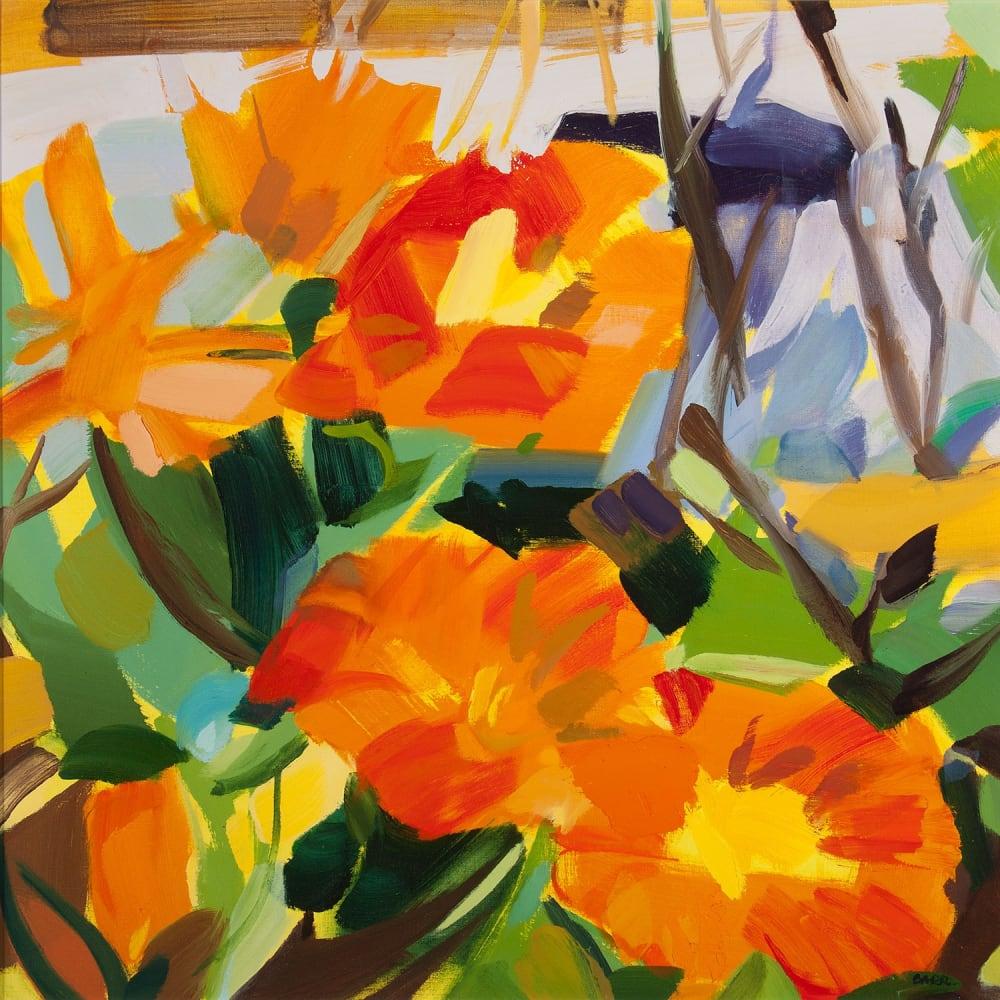 Shona Barr  Calendula  oil on canvas  71cm x 71cm