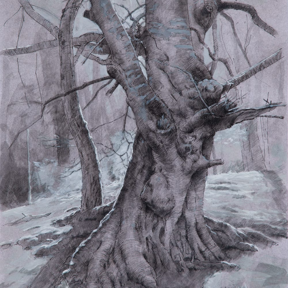 Paul Reid  Tree Study iii, 2018  ink, charcoal and acrylic  42cm x 30cm