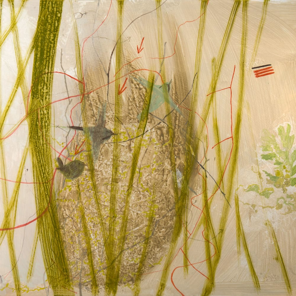Janet Melrose RSW  Birds at Eremo  acrylic on gesso panel  50cm x 60cm