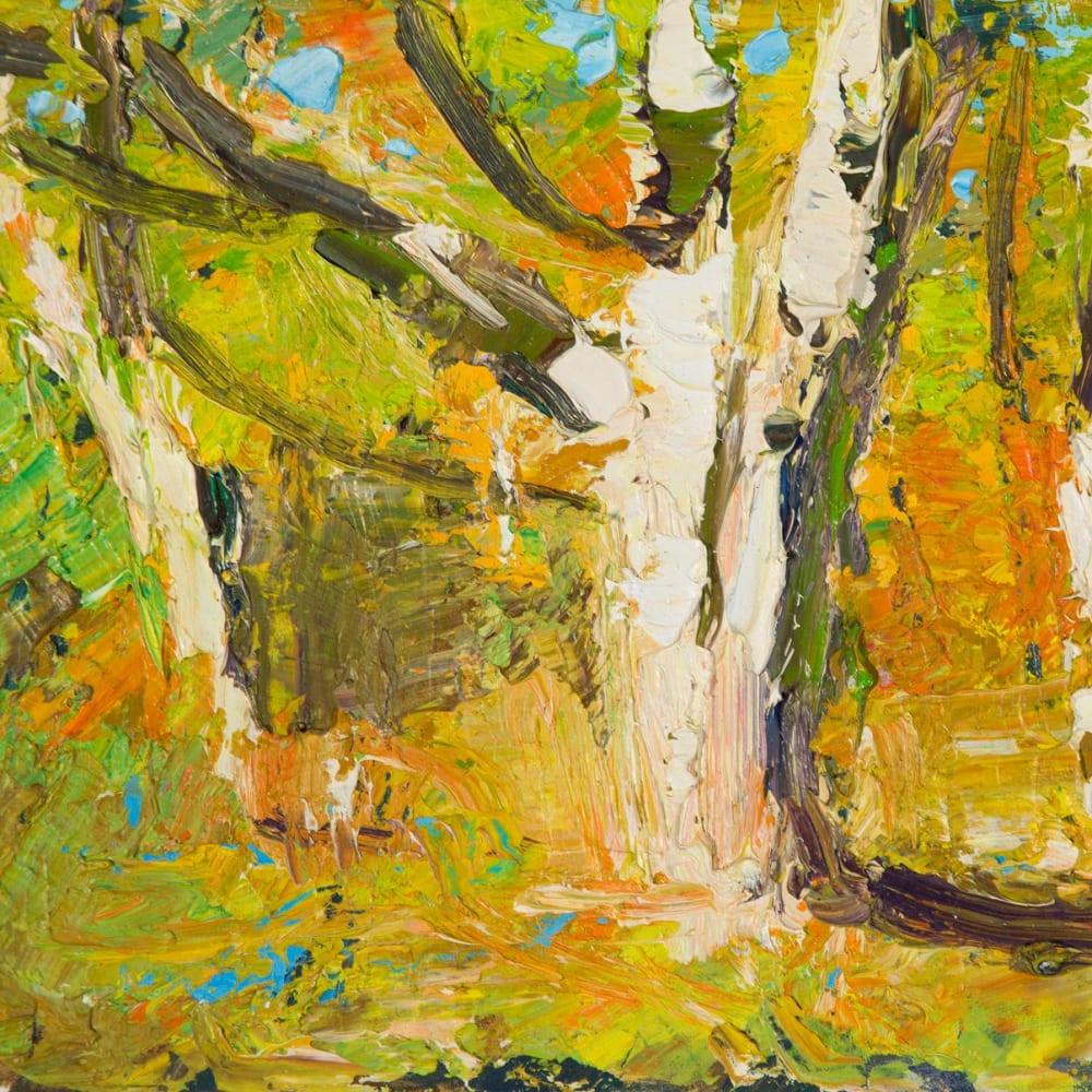Allan MacDonald  Belladrum beech  oil on canvas  20cm x 25.5cm