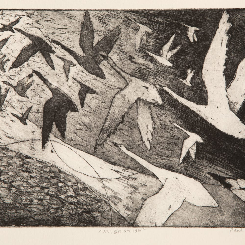 Paul Bloomer  Migration, 2019  etching  21cm x 15cm  Edition of 50