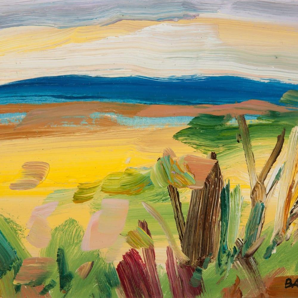 Shona Barr  Lush Field (study)  oil on card  17cm x 21cm