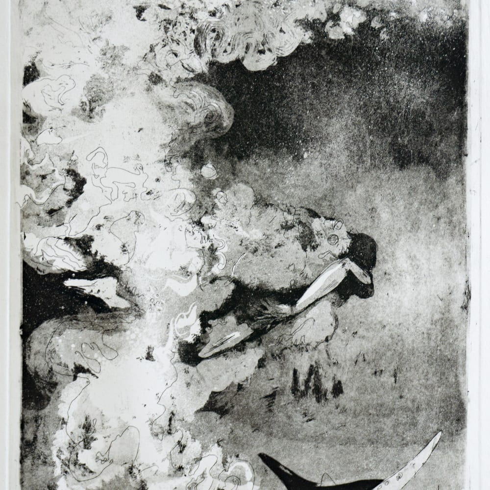 Sophie Steengracht, Immersed