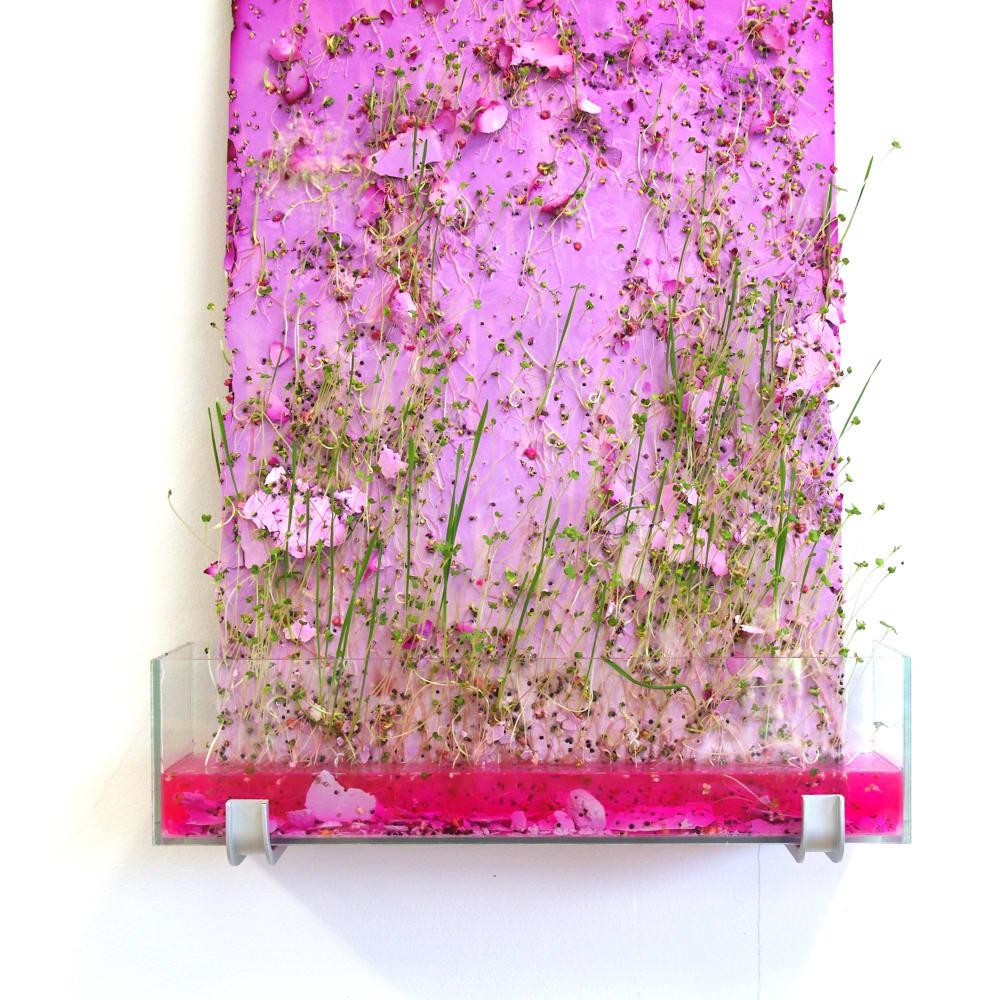 Esther Hoogendijk, Two kinds of pink + green