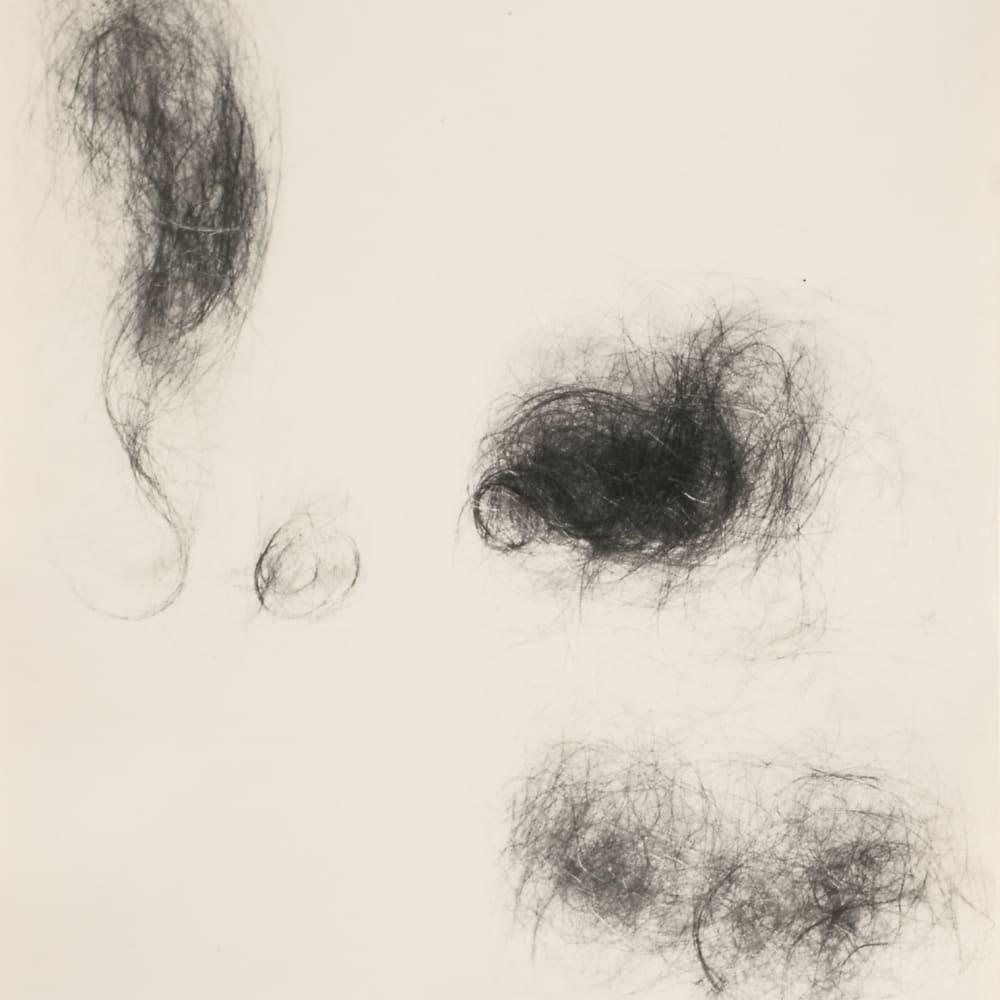 Four Knots of Hair