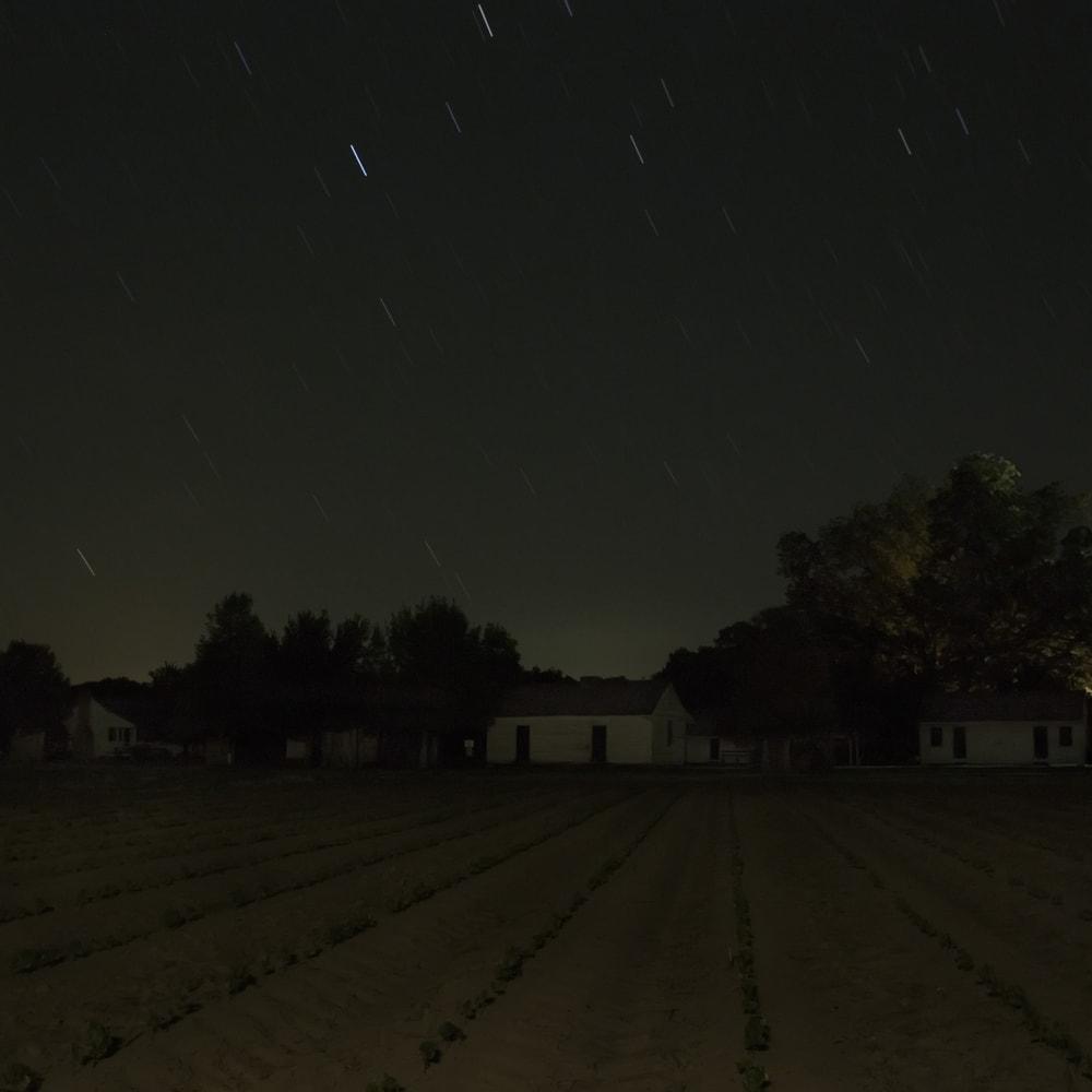 Stopover, Frogmore Plantation, Concordia Parish, Louisiana, 2014
