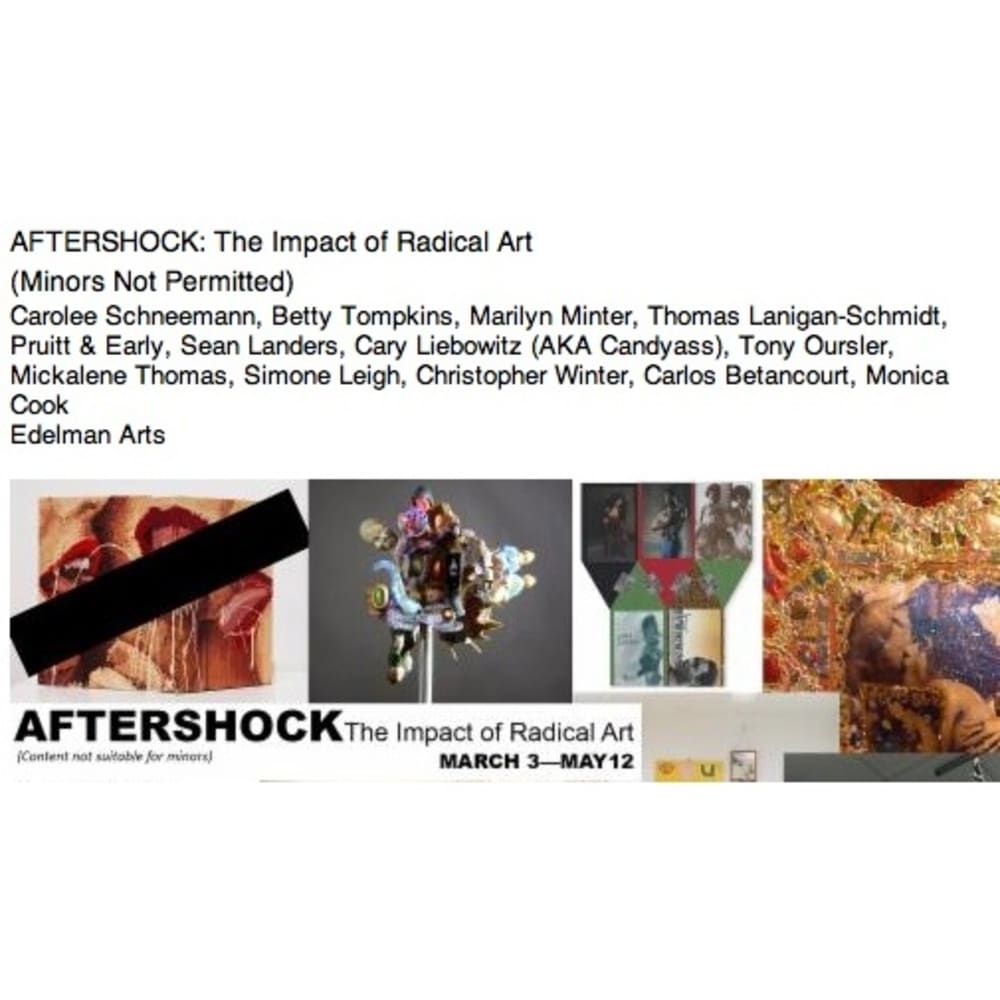 AFTER SHOCK The Impact of Radical Art