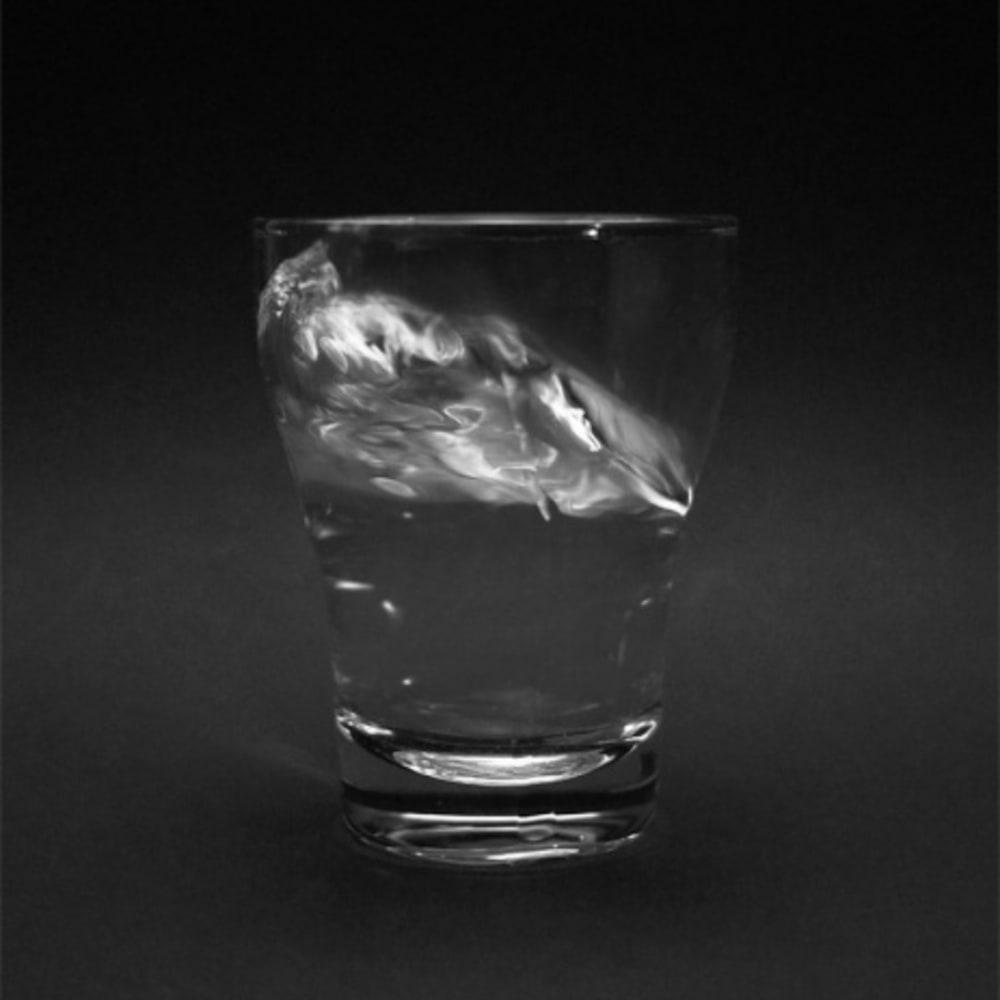 Timotheus Tomicek, Emotional Water, 2016