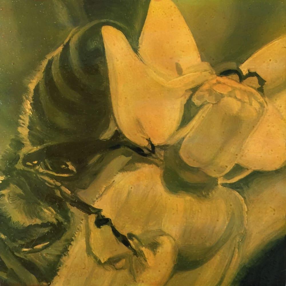 An Intimate History of Milkweed: Nan Ring