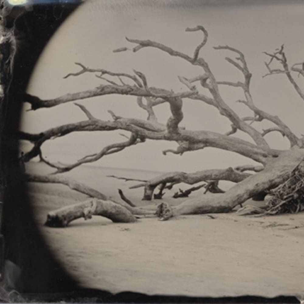 Abandoned: Joni Sternbach