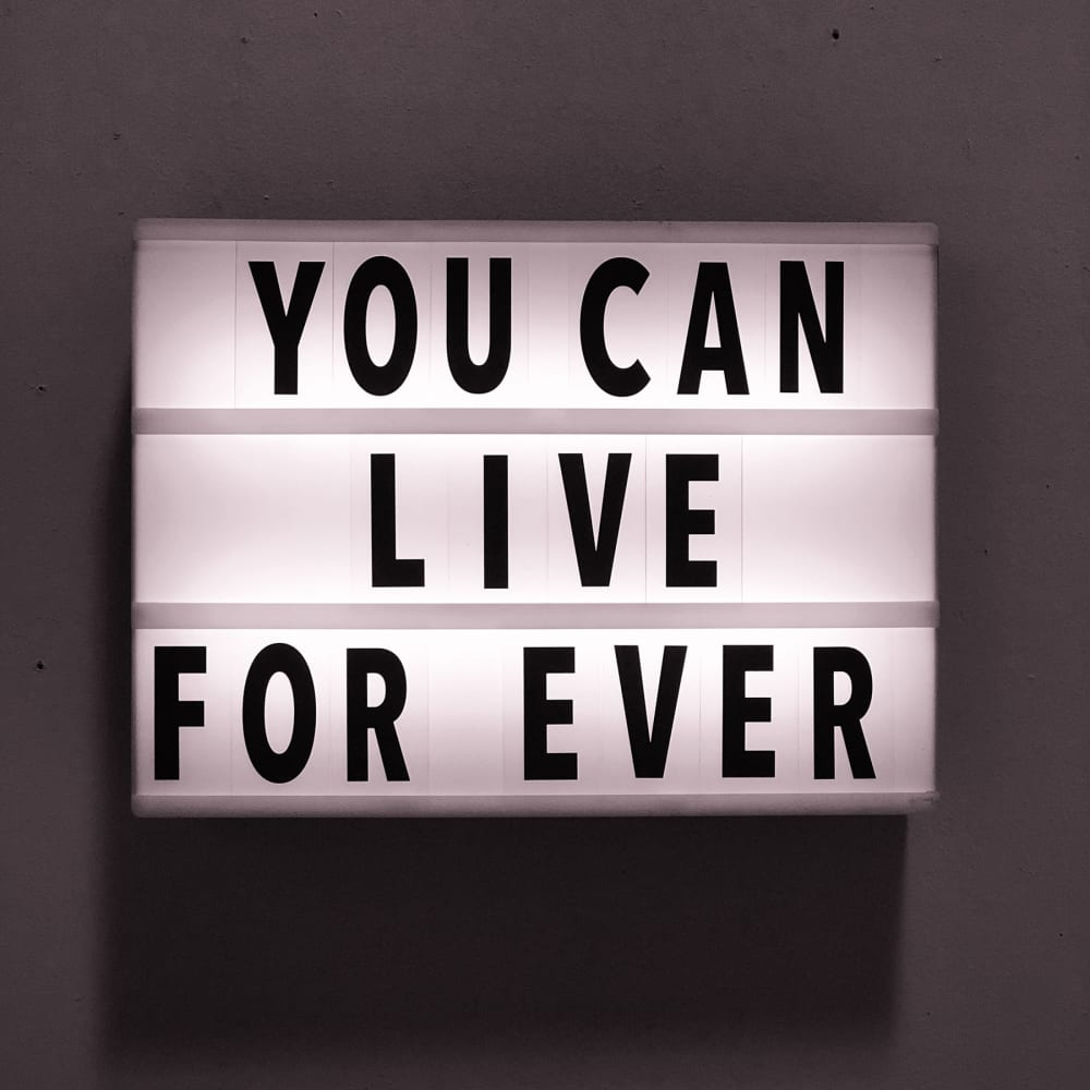 April Marten, You Can Live For Ever, 2018. April Martin, Monica King Contemporary