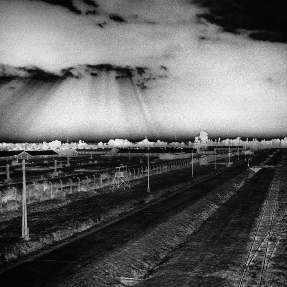 Judy Glickman Lauder: Beyond the Shadows