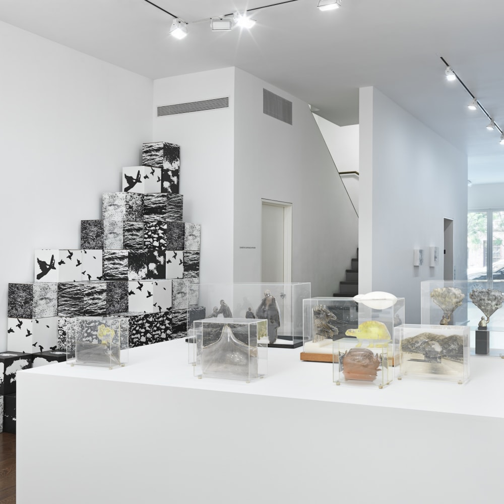 The Photographic Object, 1970 (2014) (installation view). Courtesy the artist and Hauser & Wirth, New York.