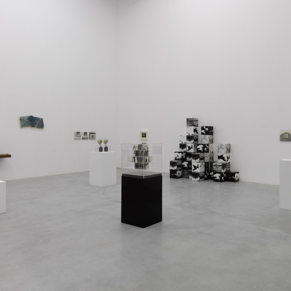 The Photographic Object 1970 (2013) (installation view). Courtesy of Le Consortium Museum, Dijon, France.