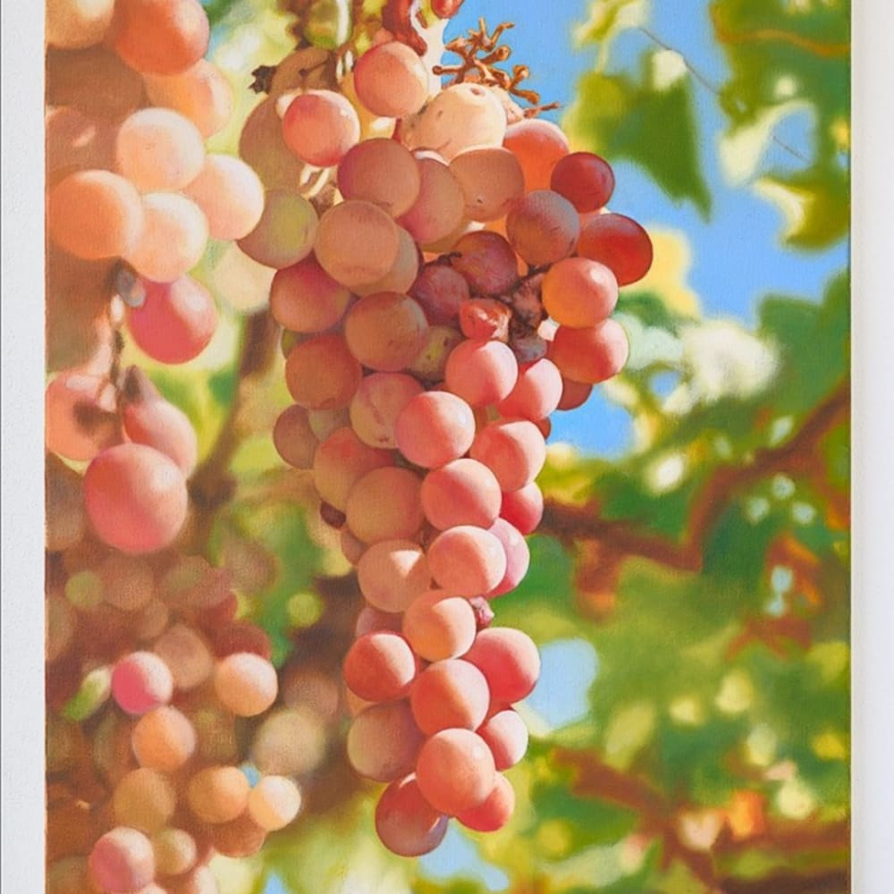 Mustafa Hulusi  Cyprus Realism (Verigo Grape 4) SM​ 2019 Oil on canvas 76 x 51 cm