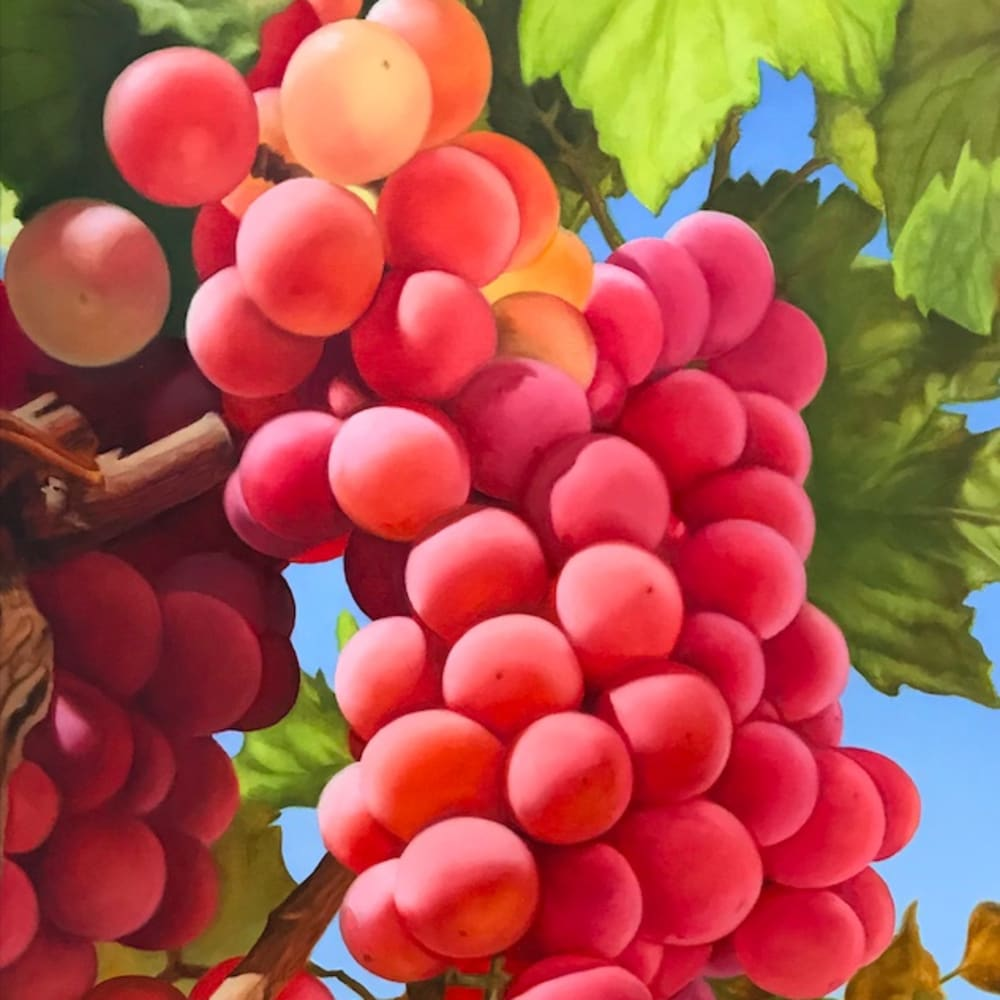 Mustafa Hulusi, Cyprus Realism (Grape 2) S, 2019, Oil on canvas, 76.2 x 50.8 cm