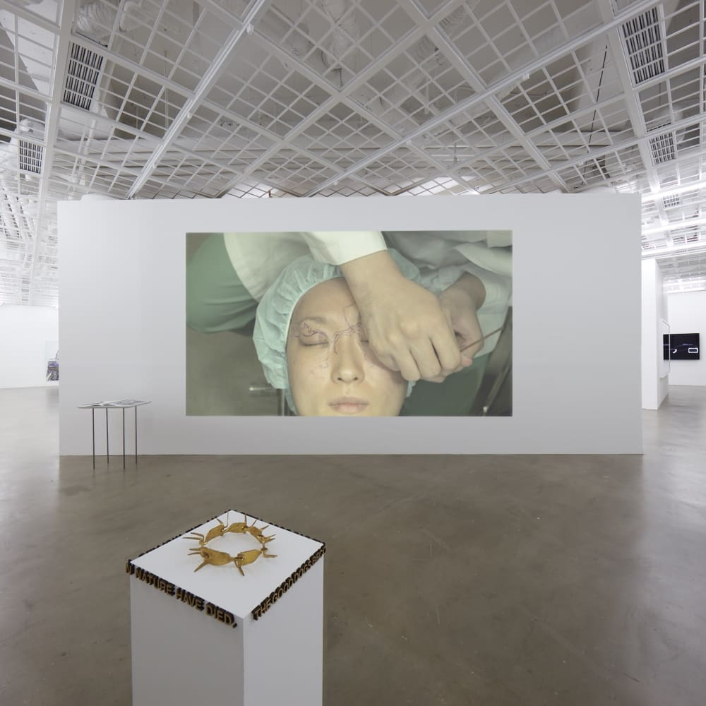 Installation view of The Emotion of Land, THE CUT by Post Cosmetic, at the exhibition'Money Without Nationality' Art Sonje Center, 2017,[the exhibition space under normal light condition] https://vimeo.com/187520217