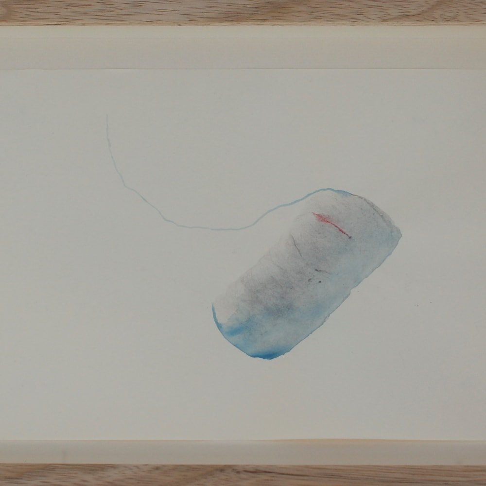 IzOztat_PleasureSizzle_2018_02_WatercolorOnPaper_21x30cm
