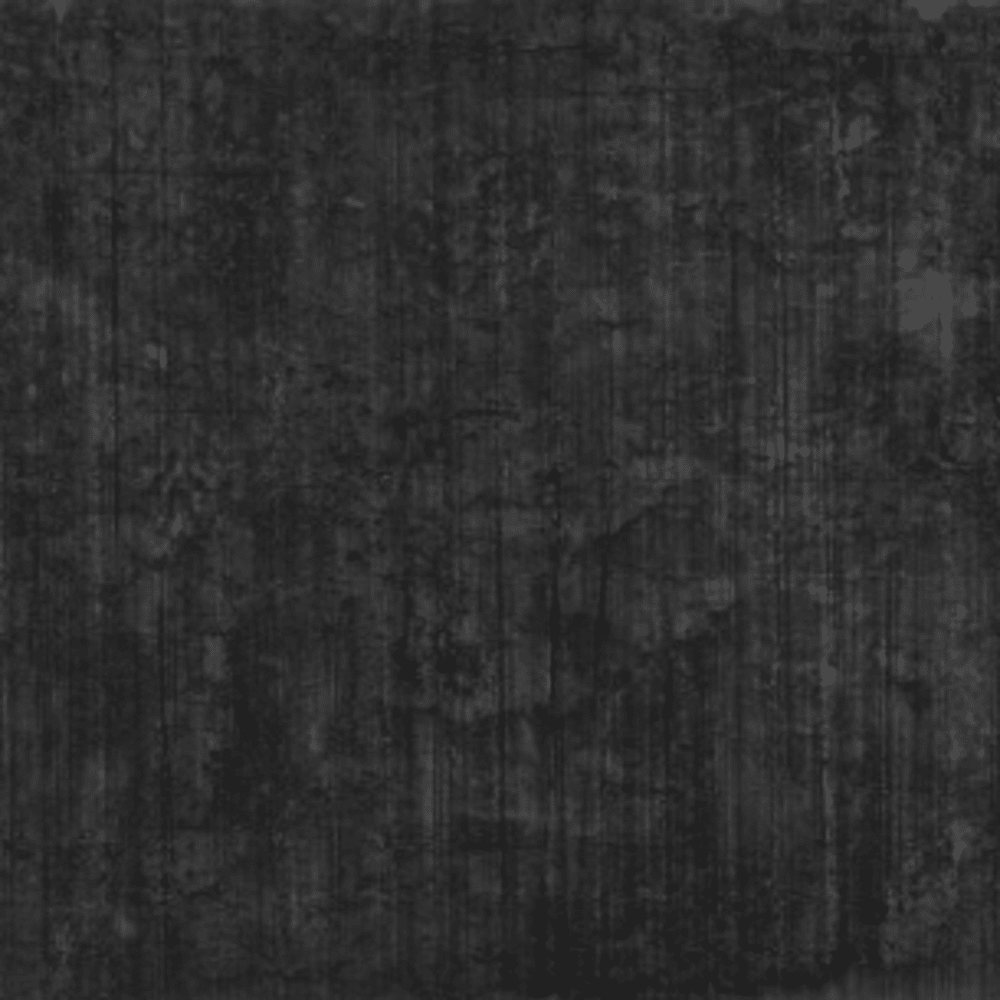 Untitled, 2013. Graphite and silver drawing on canvas. 200 x 180 cm.