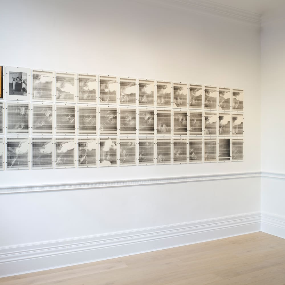 Installation view, Paulo BRUSCKY: The Gallery will be fumigated of art.  Photo: Peter Mallet