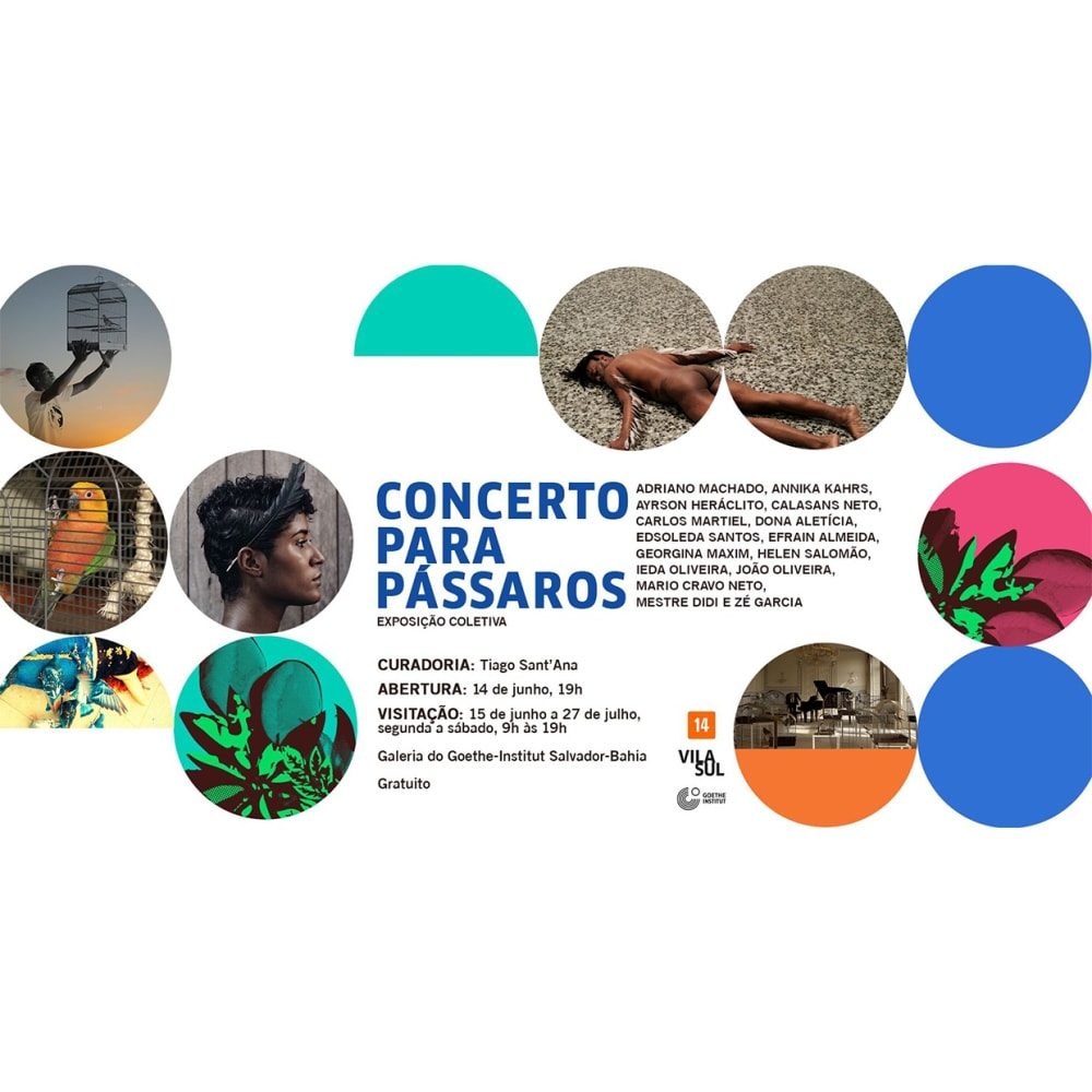 'Concerto para aves' (Concert for birds) curated by Tiago Sant'Ana