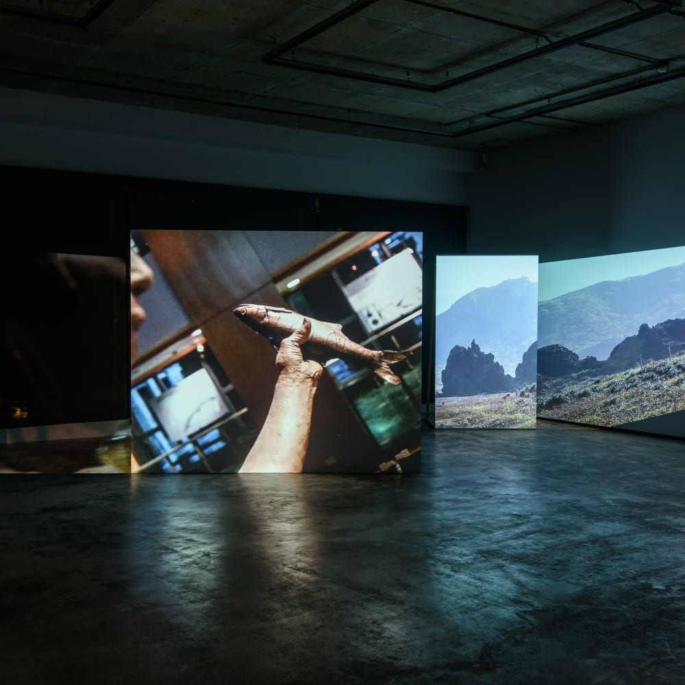 折射|吳其育|2015|錄像裝置|09'46'' 尺寸依場地而定 Refraction|Wu Chi-Yu|2015|Video Installation|09'46'' Dimensions variable