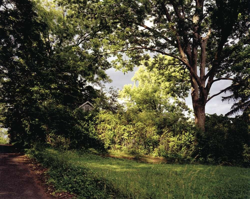 Angela West, Familiar Landscape #1, 2002