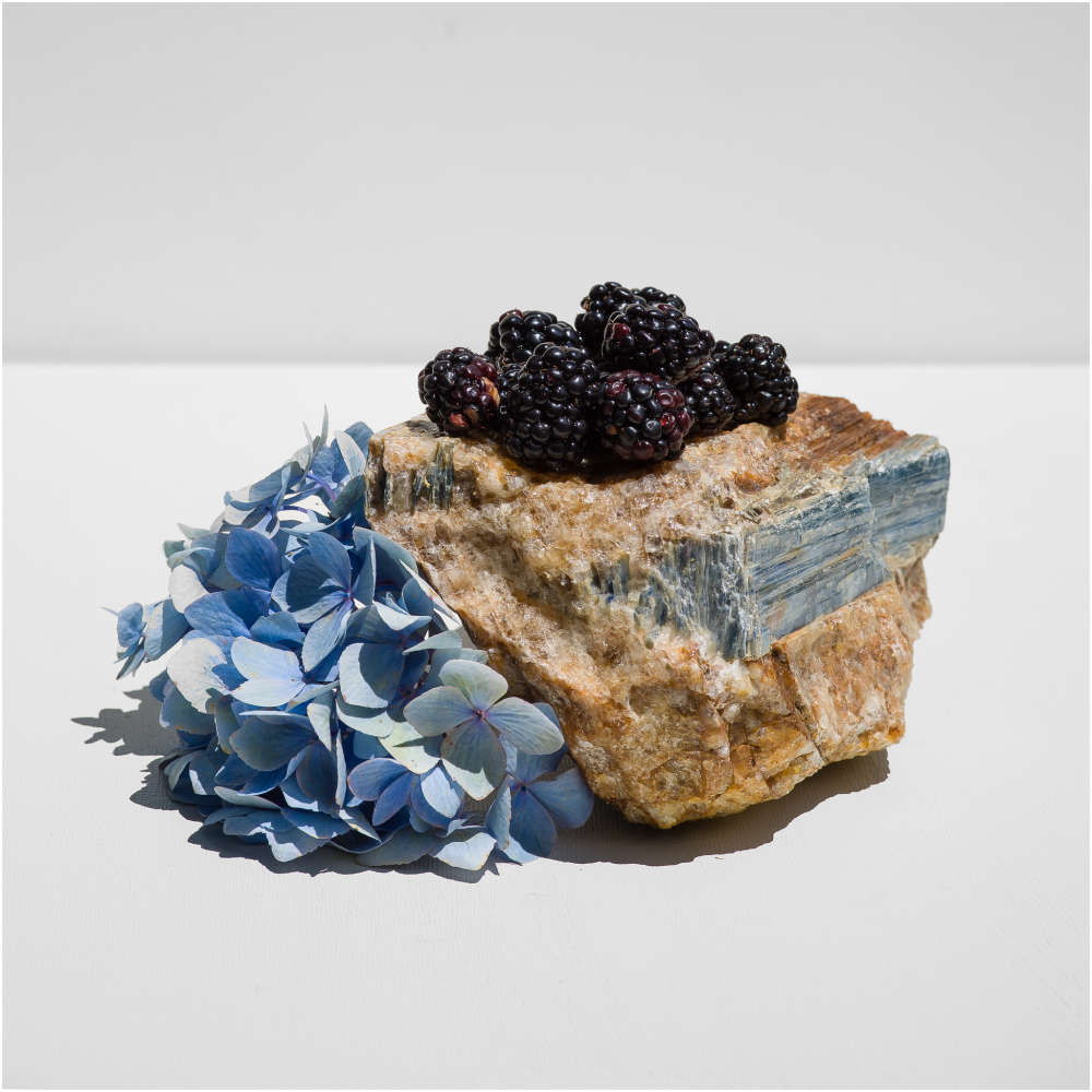 Carolyn Carr, Sunday's Blackberries
