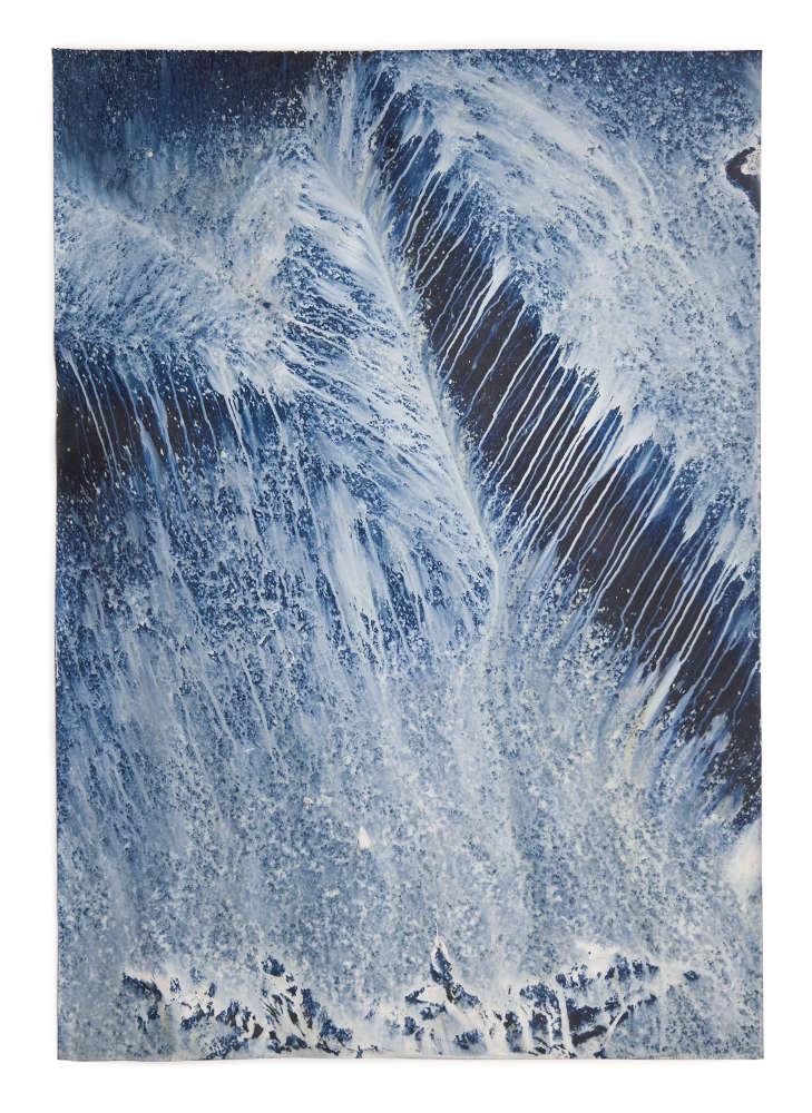 Meghann Riepenhoff, Ecotone #641 (Bainbridge Island, WA 03.08.19, Snow and Rain, Draped on Stump and Fern), 2019