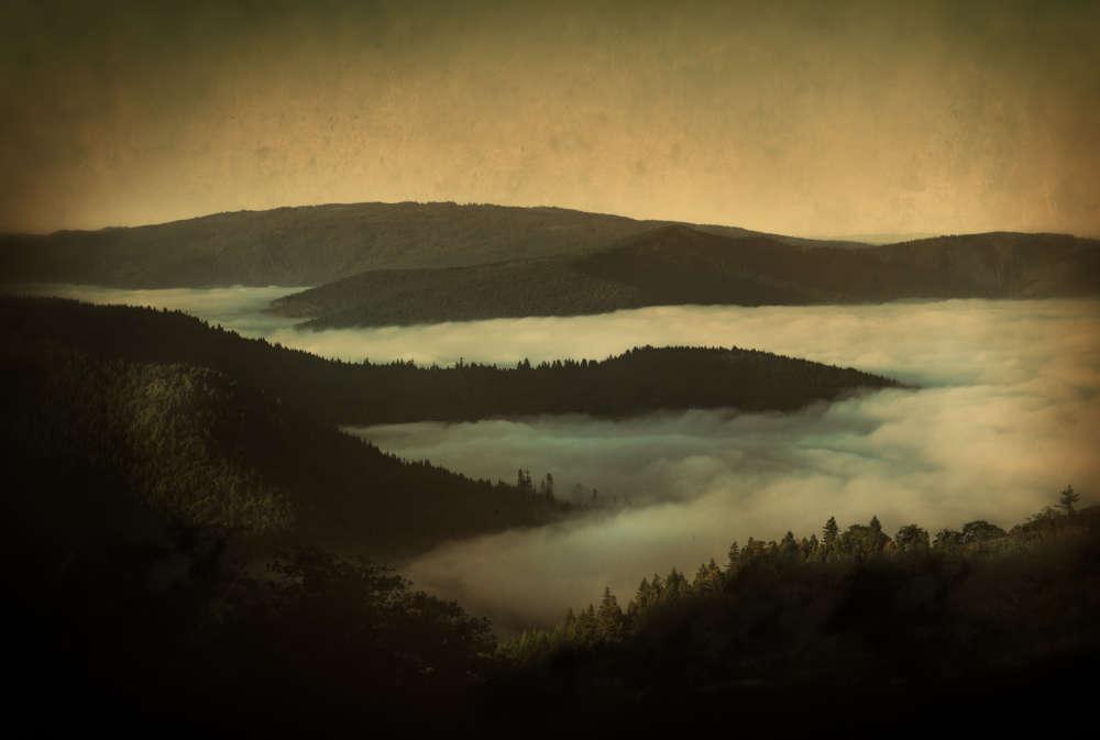 Jack Spencer, Above the Fog, Eureka, California, 2014