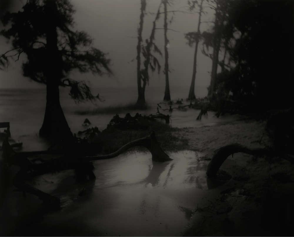 Sally Mann, Deep South, Untitled (Bones II), 1998