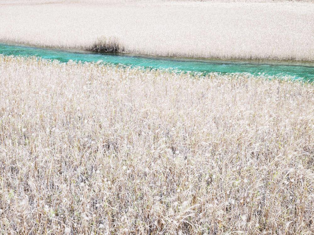 Josef Hoflehner, Turquoise Stream, Jiuzhaigou, China, 2008
